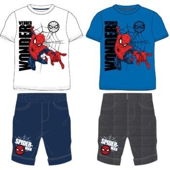 Set 2/1 Spiderman